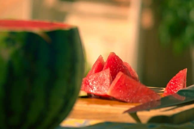 wild watermelon before man domesticated